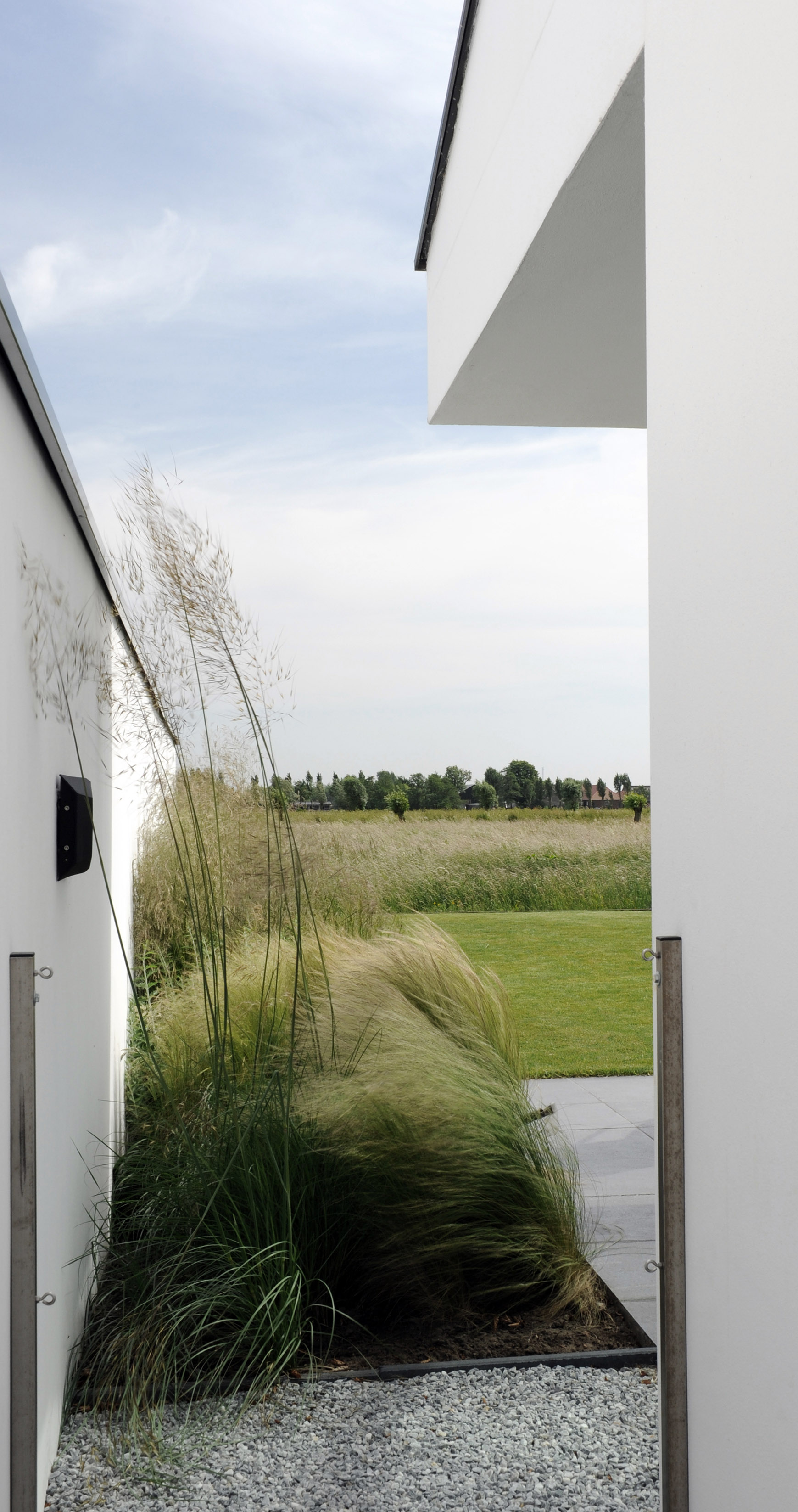 Perennial grassen connecting to the emotion of the fields surrounding the property